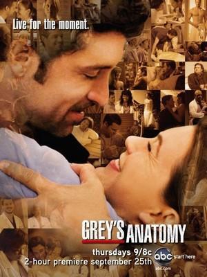 Grey's Anatomy Promo-greys-anatomy-saison-5-affiche-L-1