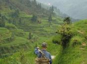 Itinéraire entre Guizhou Guangxi