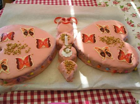 Gateau en forme de papillon pour les 5 ans de justine voir - Decoration gateau papillon ...