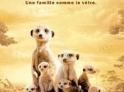 Paul Newman raconte Famille Suricate coin