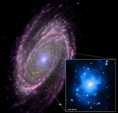 M81, image composite (Chandra, Hubble, Galex)