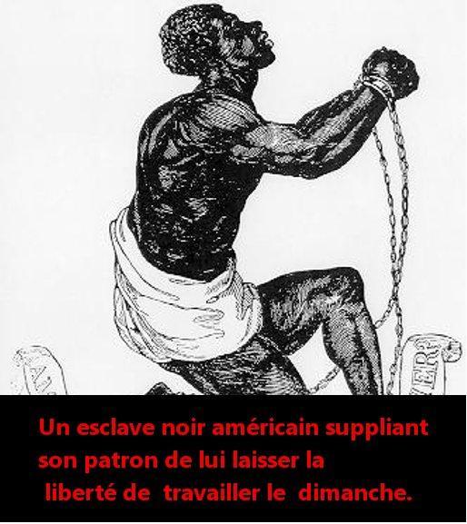 Pour la liberté du travail des enfants! Pétition du sarkopathe