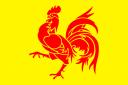 drapeauwallon.png