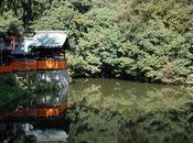 Balade Fushimi Inari