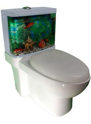 des toilettes aquariums paperblog. Black Bedroom Furniture Sets. Home Design Ideas