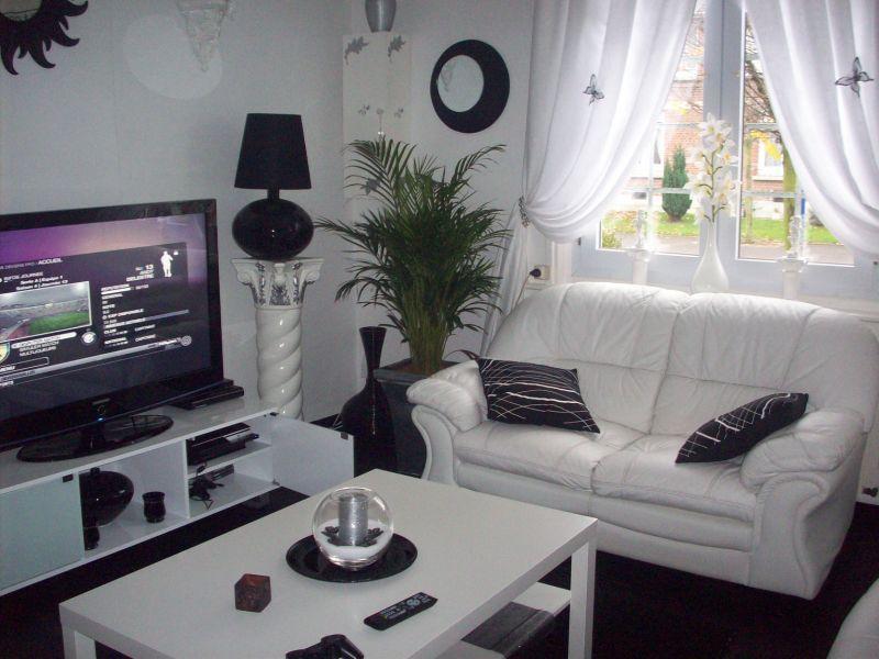 Ajouter une couleur dans ce salon noir et blanc d couvrir for Salon decoration interieur