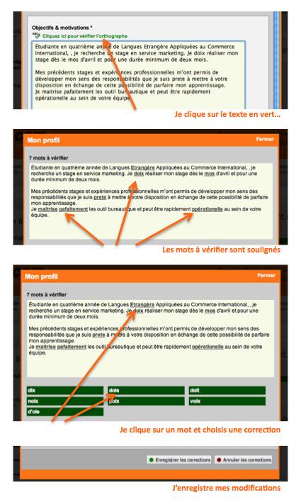 correcteur orthographique pour tous les textes de votre cv  en 7 langues