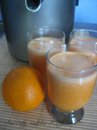 Jus oranges carotte la centrifugeuse paperblog - Jus a la centrifugeuse ...