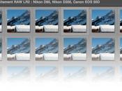 Test comparatif Nikon D90, D300 Canon