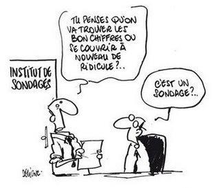 http://media.paperblog.fr/i/147/1474569/sondage-elections-regionales-roger-karoutchi--L-1.jpeg