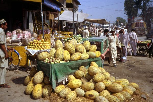 pakistan-vendeur-melon.1231924284.jpg
