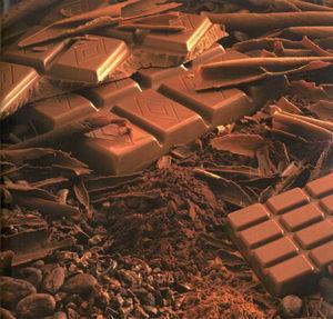 chocolat_d_gustation