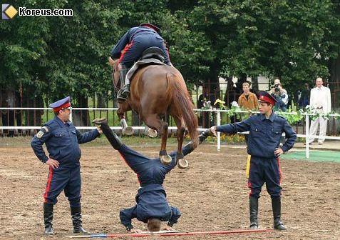 4image sport05 Le saut sous toutes ses formes.... photo cheval