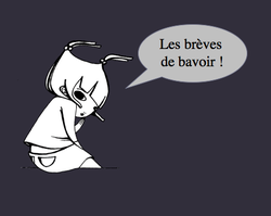 Les_brves_de_bavoir_zolimme
