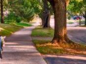 enfants marchent moins pour aller l'école