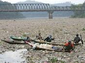 tonnes déchets accumulés dans Pacifique