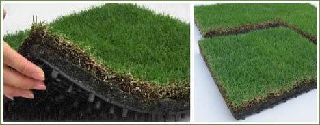 herbe naturelle mettant les coûts d'installation verts