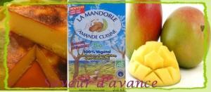 flan-patissier-mangue