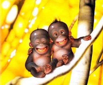 Des singes dans Come in my World