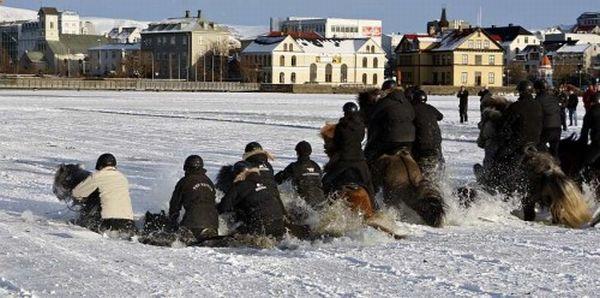 Cavaliers sur glace