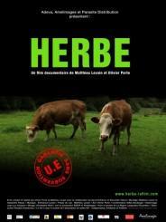 Herbe - Soliblog