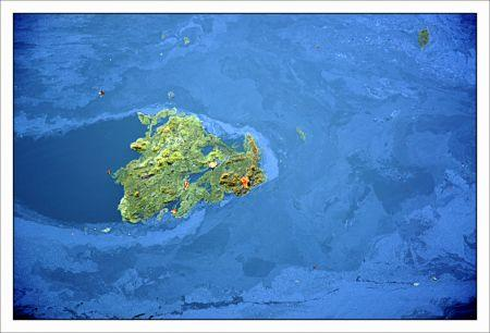 Blog Google earth.jpg