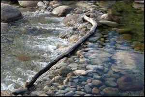 Un théâtre de l'exactitude écarte les plis de l'eau