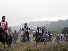 230px-Endurance_riding_Uzes_2005_front Léquitation, un vrai sport!