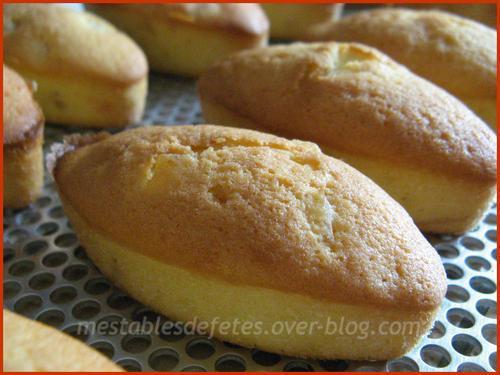 Petits cakes citron aux agrumes confits