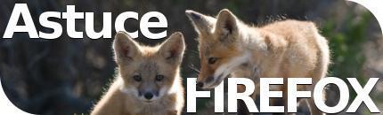 Plusieurs profils simultanés avec Firefox