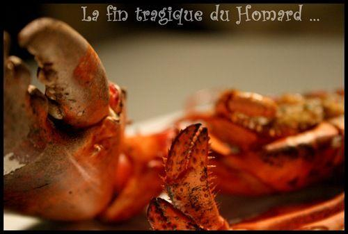 homard rôti