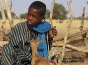 L'enfant peul terroir Oumar N'Diaye