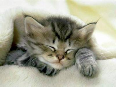 Est-il possible de faire des réserves de sommeil ?