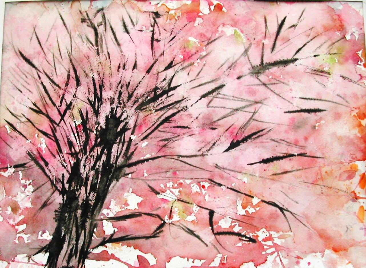 Le printemps est arriv les cerisiers du japon sont en fleurs paperblog - Arbre rose japon ...