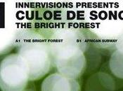 Culoe Song Bright Forest (2009)