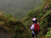 Balade toit Martinique mythique montagne Pelée