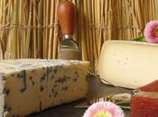 Plateau fromages Causses: dégustation direct l'Aveyron!