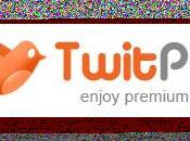 premium tweets