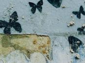 belle comme papillons