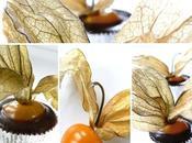 Petites Bouchées d'Amour Cage Physalis Chocolat Noir
