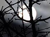 l'ombre lune