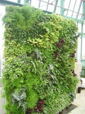Mur végétal pour les serres d'Auteuil