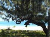 trouver notre gamme Nouvelle-Calédonie