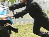 [Audiences 29/04 Moins millions fidèles pour 100ème épisode Lost