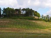 Château Pressac monumental