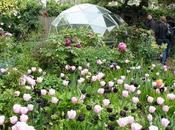 london garden trail