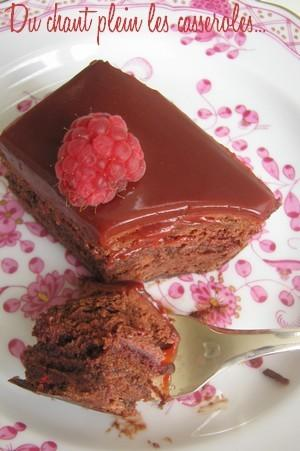Choco-framboises-Maison-du-chocolat-copie-1.jpg
