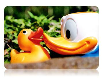 kiss bisou donald duck canard coincoin