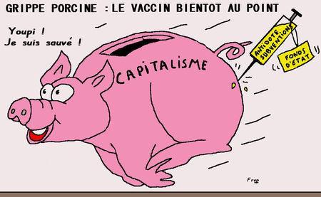 http://media.paperblog.fr/i/191/1912866/grippe-porcine-capitalisme-vaccin-vue-L-1.jpeg