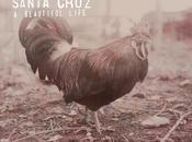 Santa cruz beautiful life